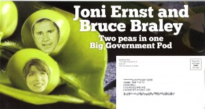 jacobs attack ernst braley peas in pod1